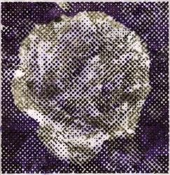 Roseviolett